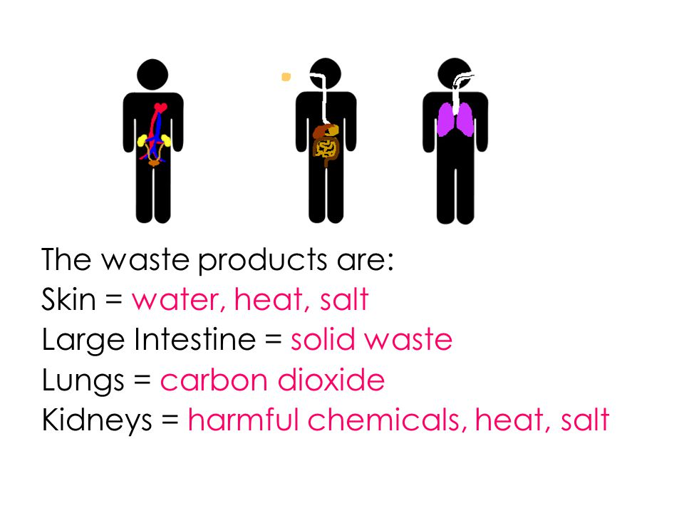 The waste products are: