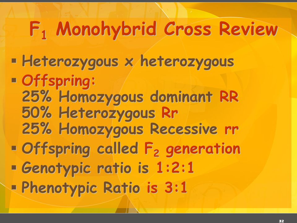 F1 Monohybrid Cross Review