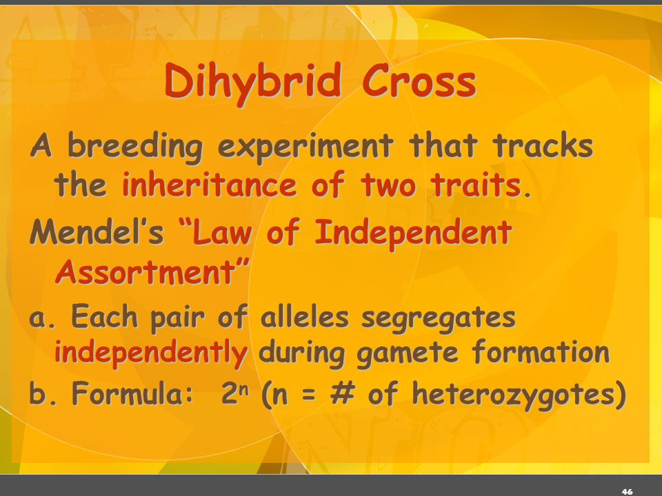 Dihybrid Cross A breeding experiment that tracks the inheritance of two traits. Mendel's Law of Independent Assortment