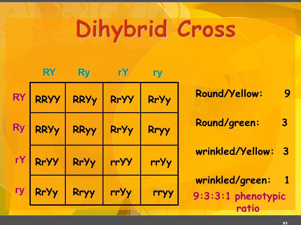 Dihybrid Cross RY Ry rY ry Round/Yellow: 9 Round/green: 3