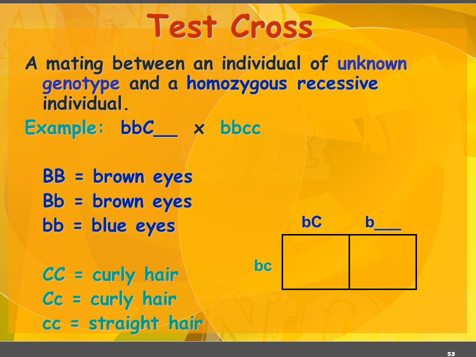 Test Cross A mating between an individual of unknown genotype and a homozygous recessive individual.