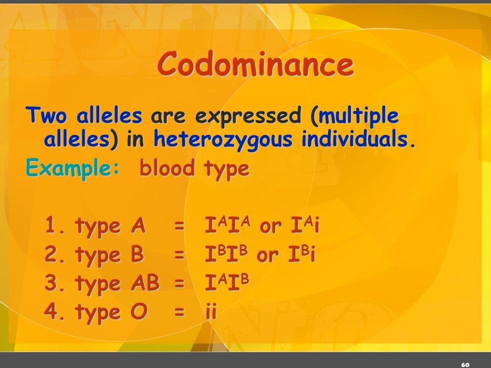 Codominance Two alleles are expressed (multiple alleles) in heterozygous individuals. Example: blood type.