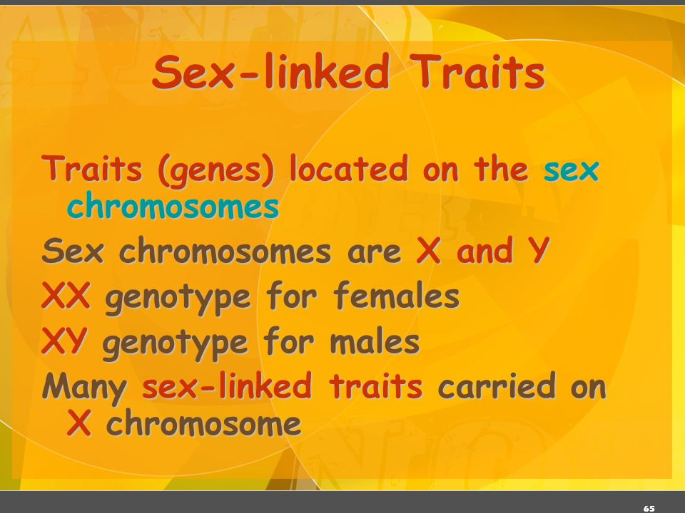Sex-linked Traits Traits (genes) located on the sex chromosomes