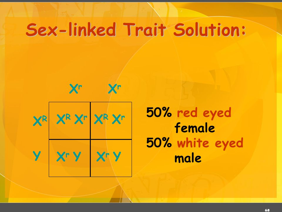 Sex-linked Trait Solution: