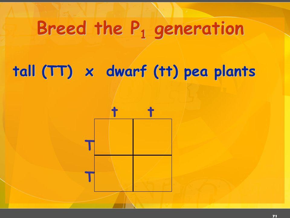 Breed the P1 generation tall (TT) x dwarf (tt) pea plants t T