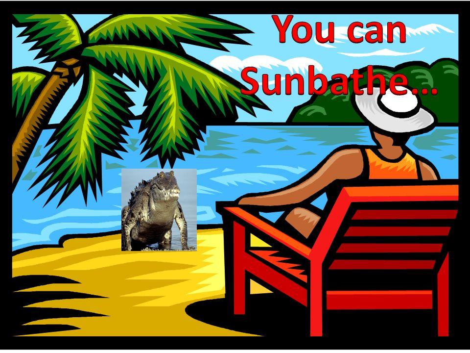 You can Sunbathe…
