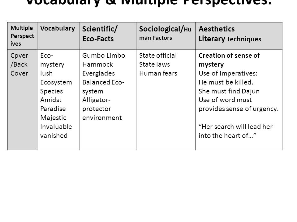 Vocabulary & Multiple Perspectives: