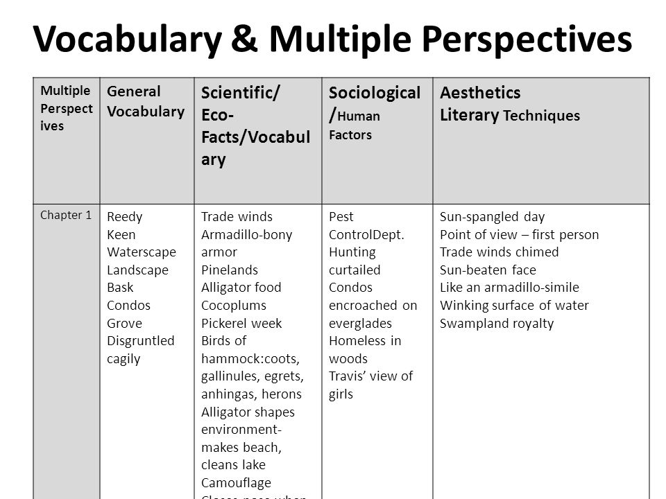 Vocabulary & Multiple Perspectives