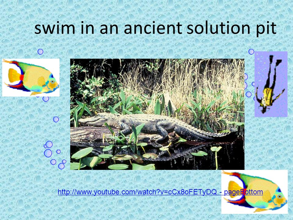 swim in an ancient solution pit