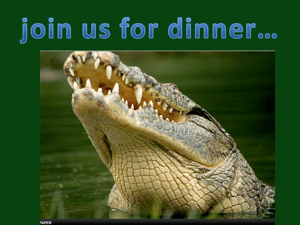 join us for dinner…