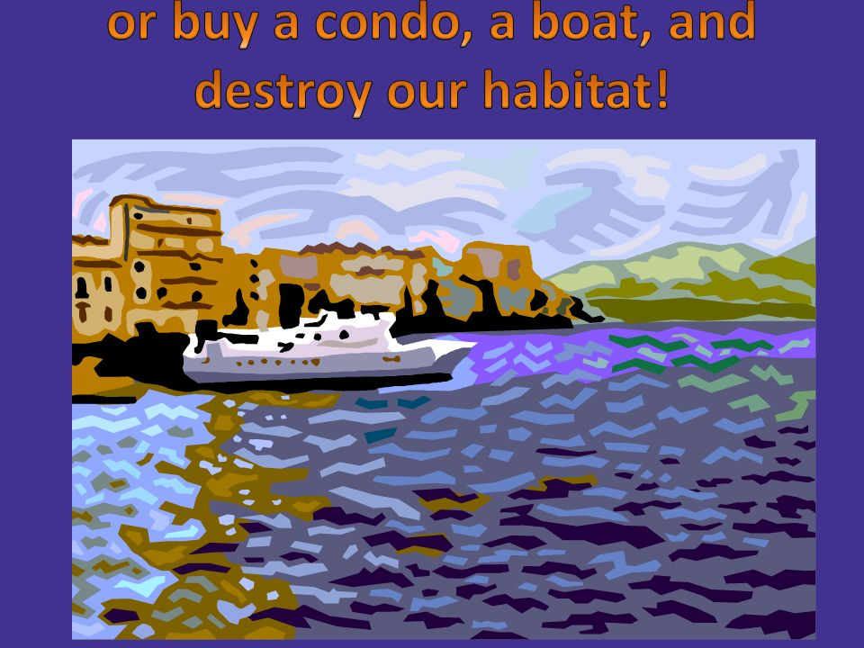 or buy a condo, a boat, and destroy our habitat!