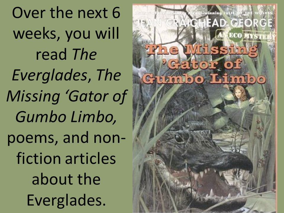 Over the next 6 weeks, you will read The Everglades, The Missing 'Gator of Gumbo Limbo, poems, and non-fiction articles about the Everglades.