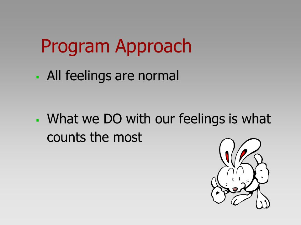 Program Approach All feelings are normal