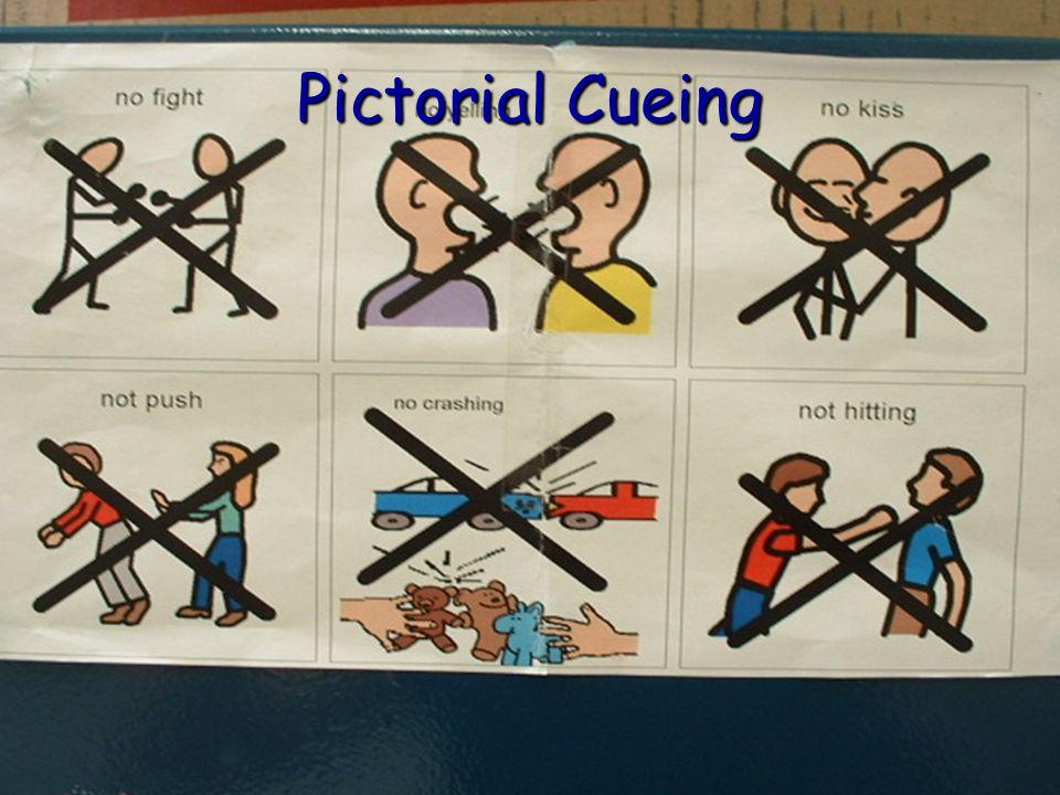Pictorial Cueing