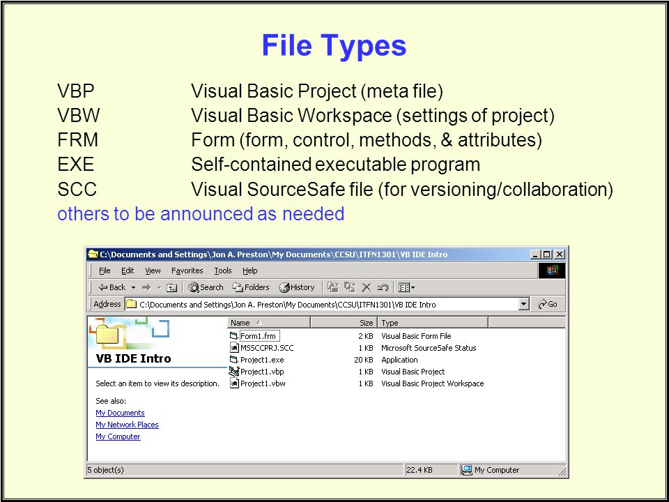 File Types VBP Visual Basic Project (meta file)