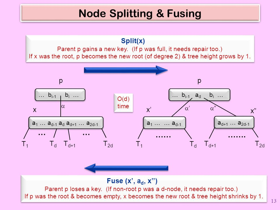 Node Splitting & Fusing
