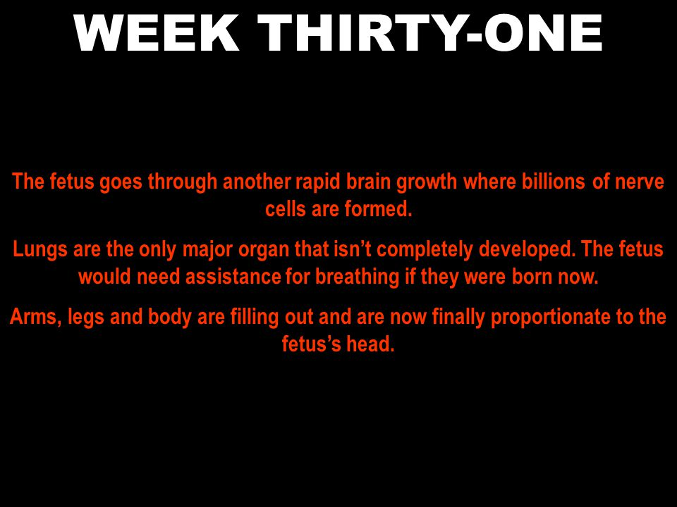 WEEK THIRTY-ONE The fetus goes through another rapid brain growth where billions of nerve cells are formed.
