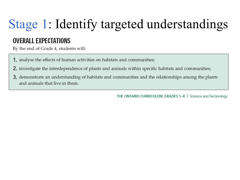 Stage 1: Identify targeted understandings
