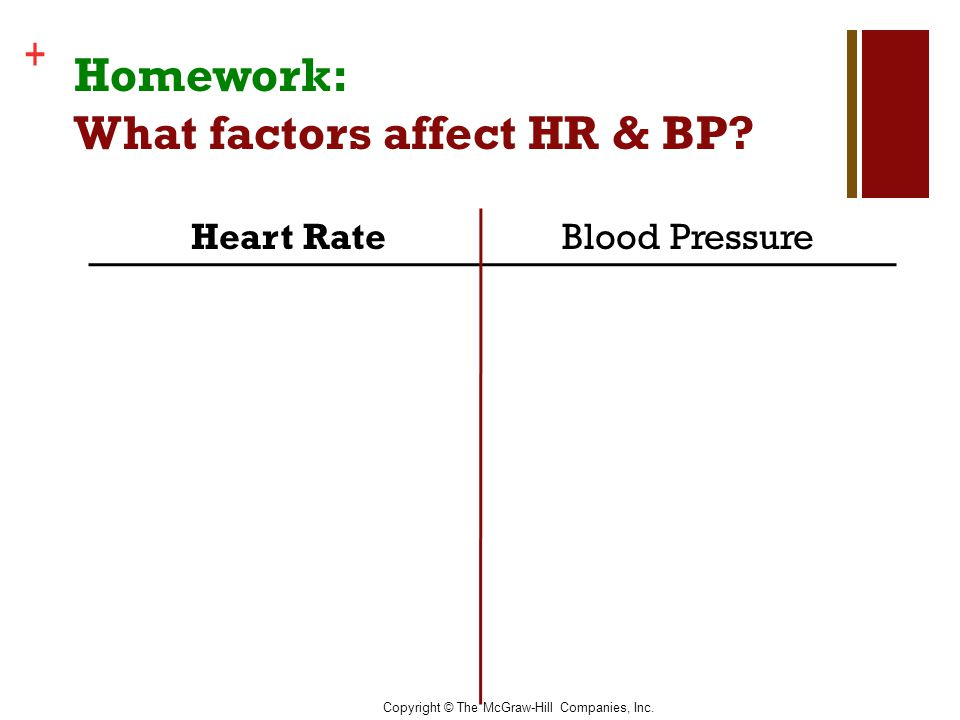 Homework: What factors affect HR & BP
