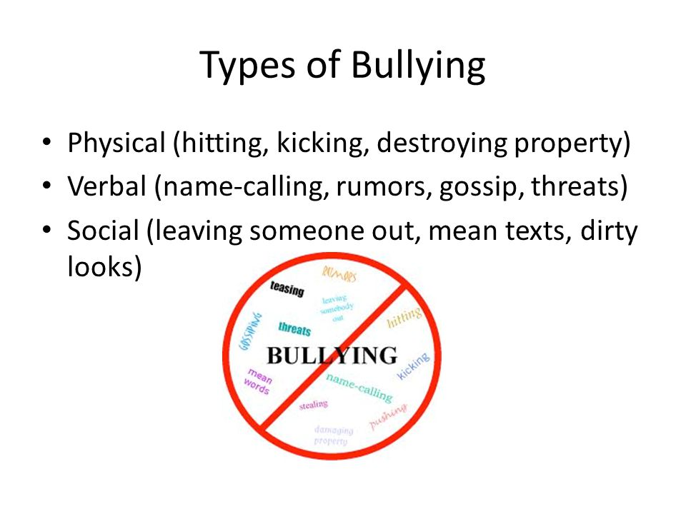 Types of Bullying Physical (hitting, kicking, destroying property)