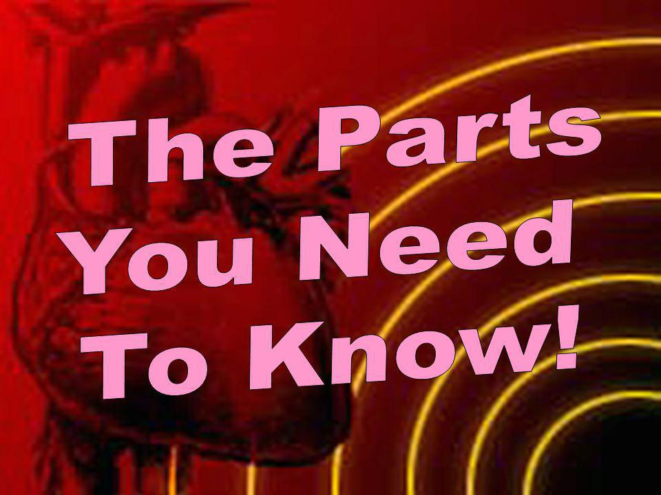 The Parts You Need To Know!