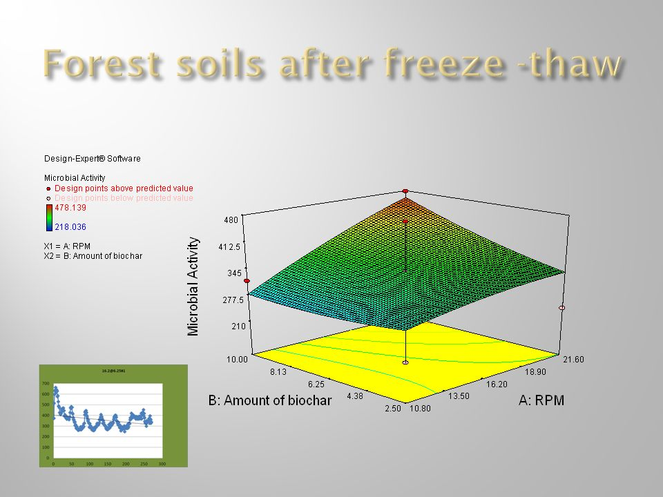 Forest soils after freeze -thaw