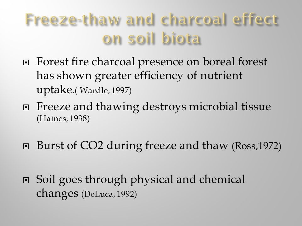 Freeze-thaw and charcoal effect on soil biota