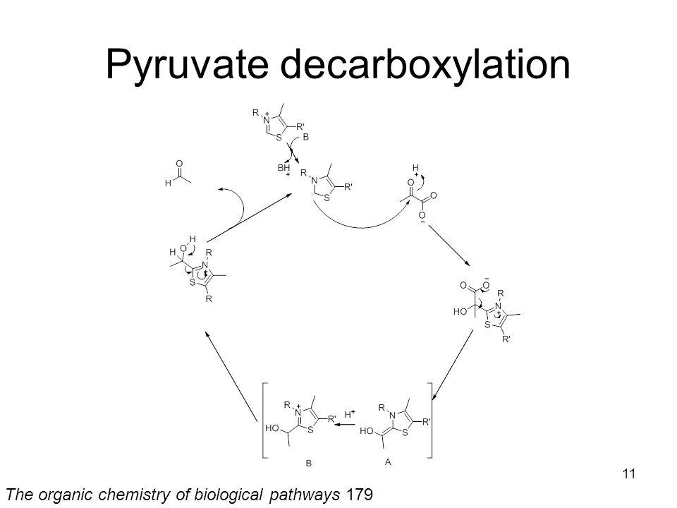 Pyruvate decarboxylation