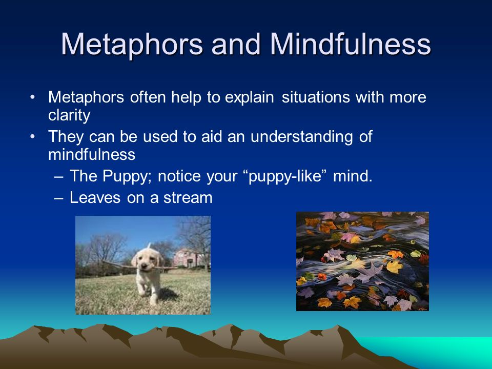Metaphors and Mindfulness