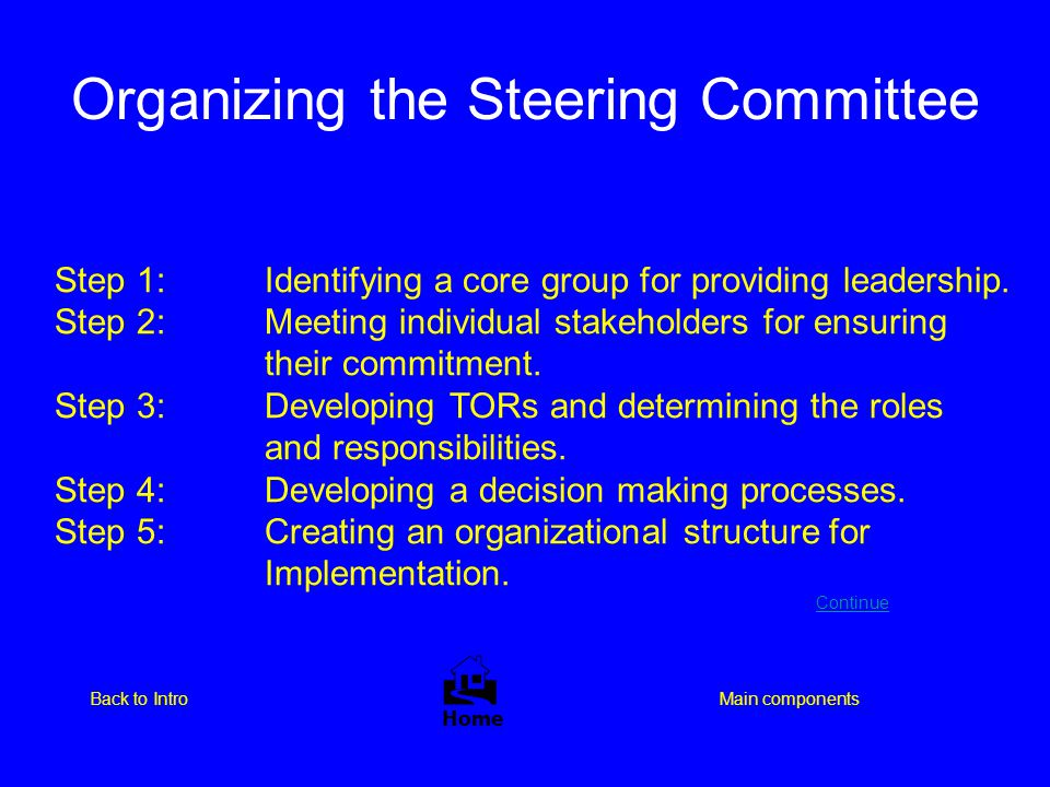 Organizing the Steering Committee