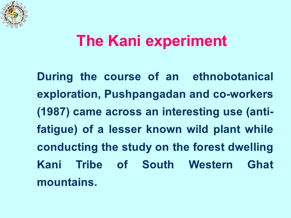 The Kani experiment