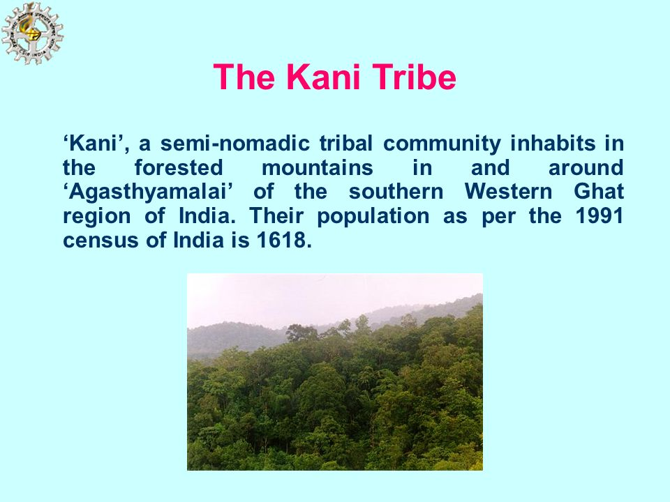Image result for Members of the Kani tribe offering