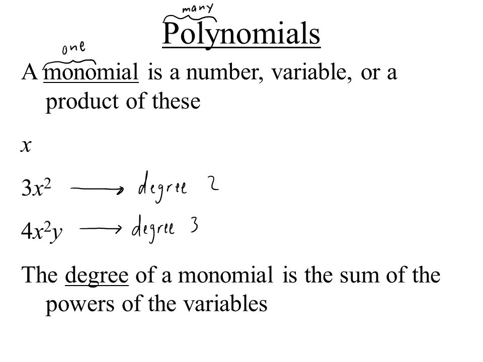 Polynomials A monomial is a number, variable, or a product of these x
