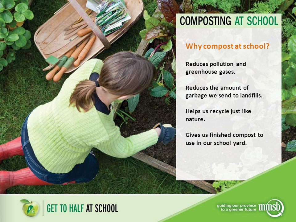 Why compost at school Reduces pollution and greenhouse gases.