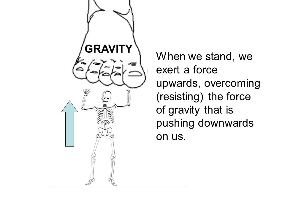 GRAVITY When we stand, we exert a force upwards, overcoming (resisting) the force of gravity that is pushing downwards on us.