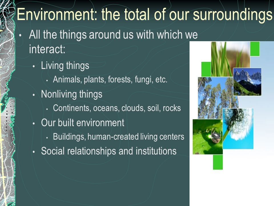 Environment: the total of our surroundings