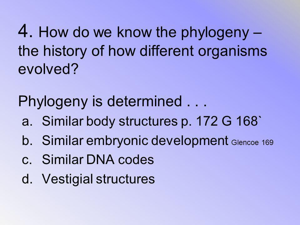 4. How do we know the phylogeny – the history of how different organisms evolved