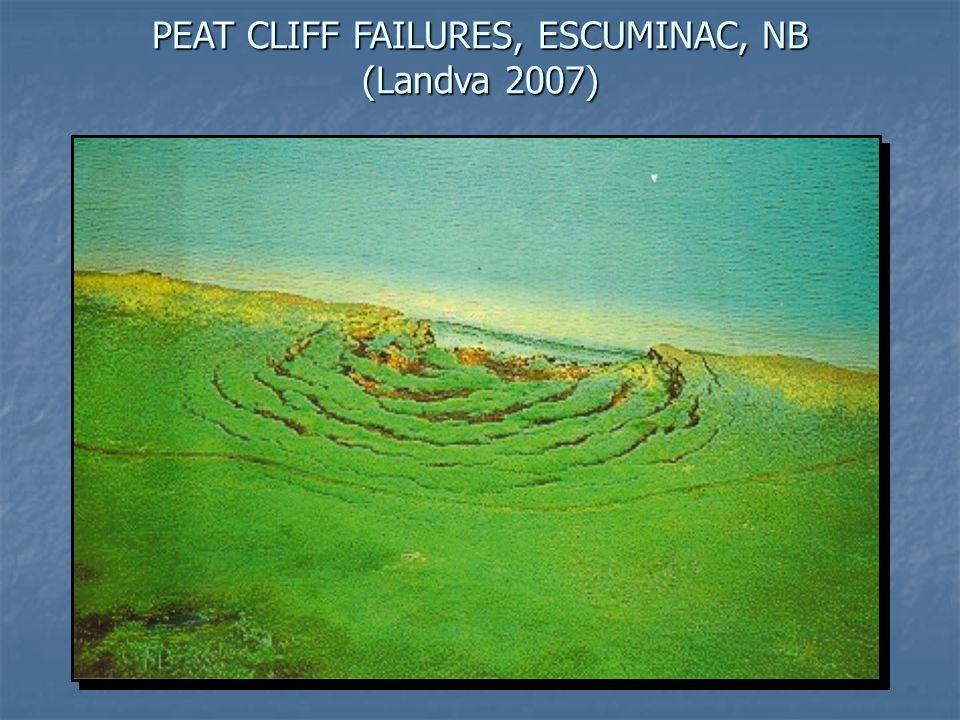 PEAT CLIFF FAILURES, ESCUMINAC, NB (Landva 2007)