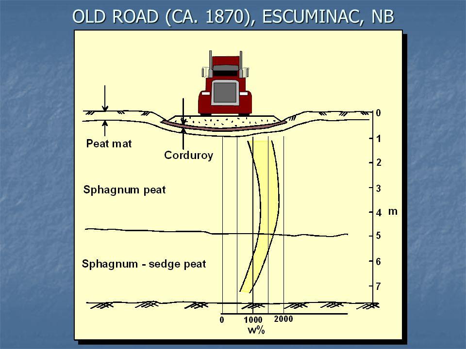 OLD ROAD (CA. 1870), ESCUMINAC, NB