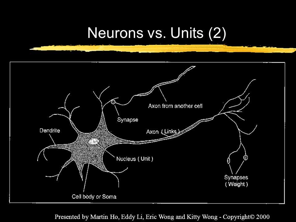 Neurons vs. Units (2) Presented by Martin Ho, Eddy Li, Eric Wong and Kitty Wong - Copyright© 2000