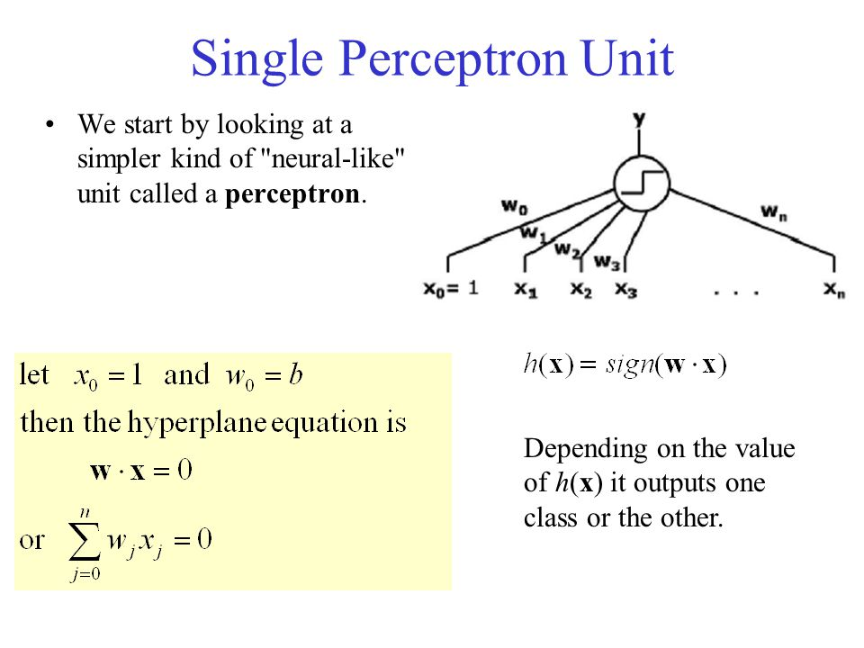 Single Perceptron Unit