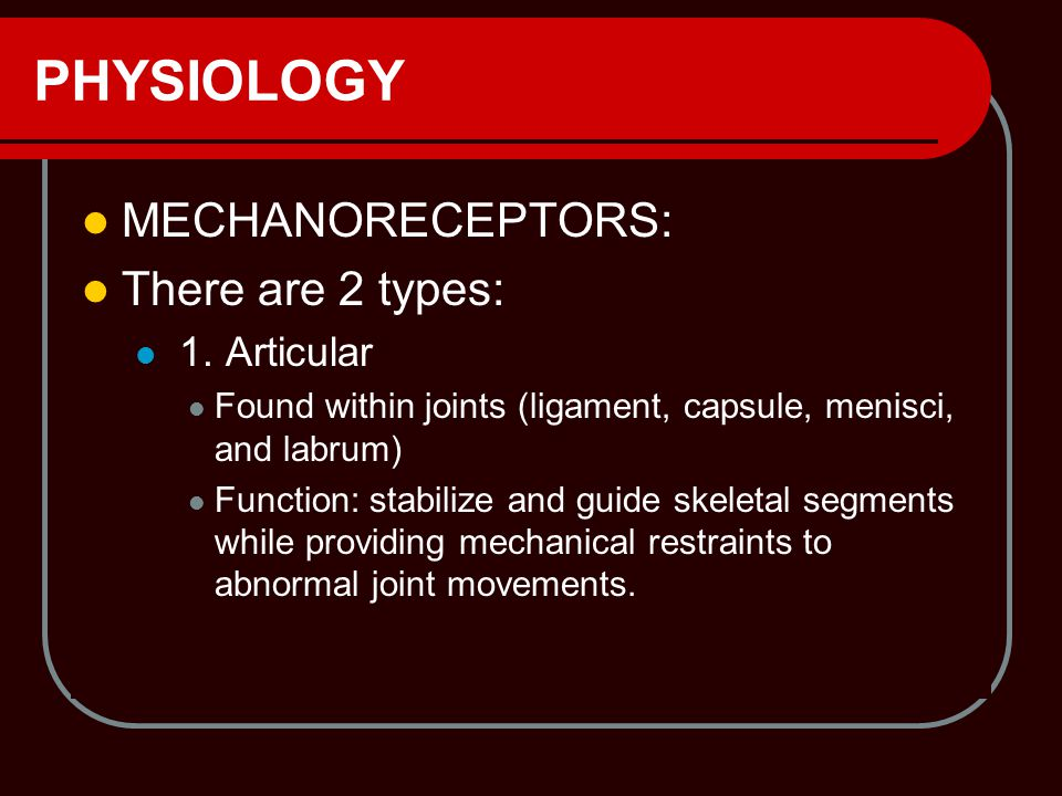 PHYSIOLOGY MECHANORECEPTORS: There are 2 types: 1. Articular