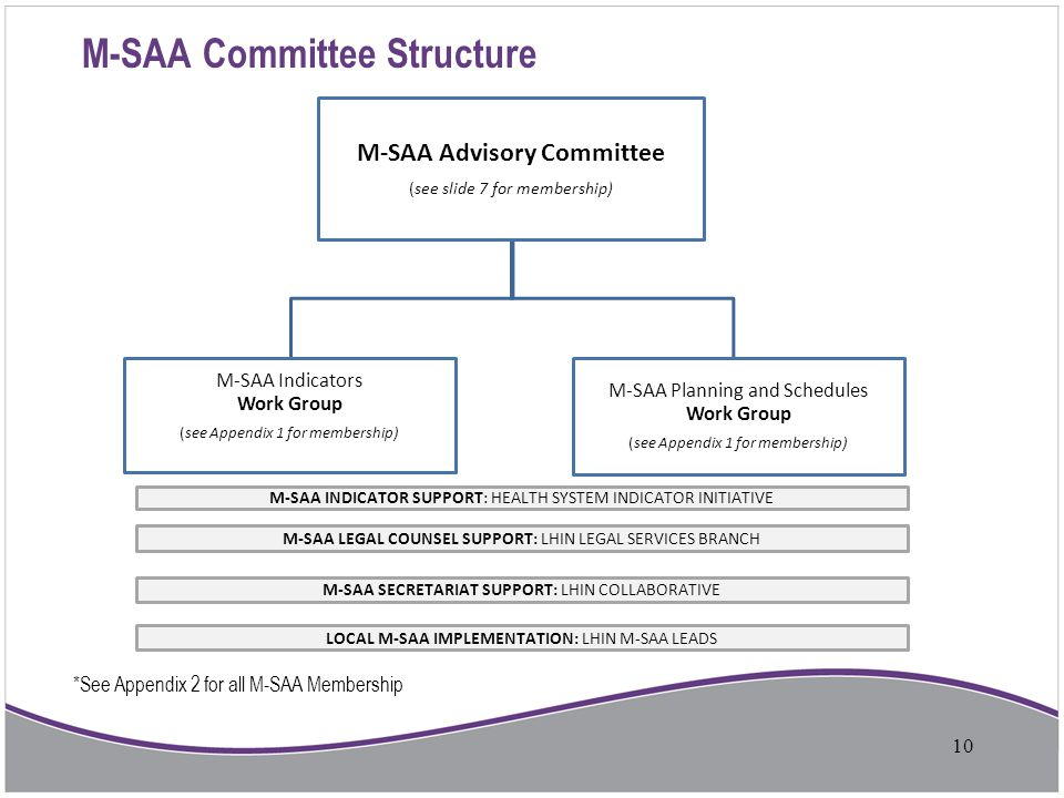 M-SAA Committee Structure