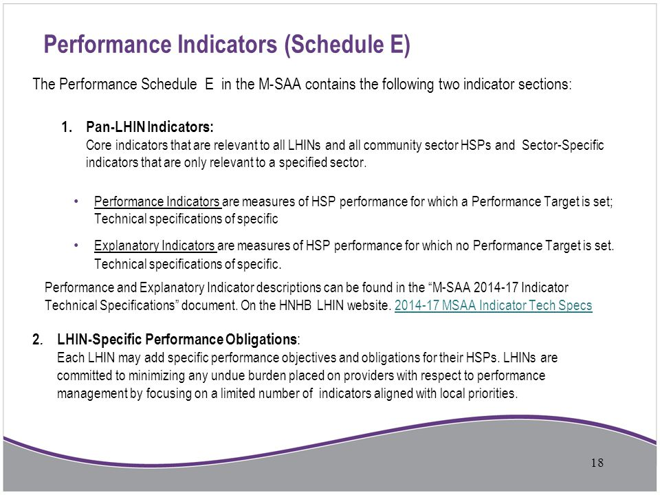 Performance Indicators (Schedule E)