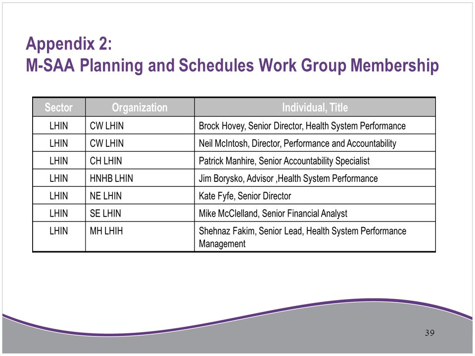 Appendix 2: M-SAA Planning and Schedules Work Group Membership