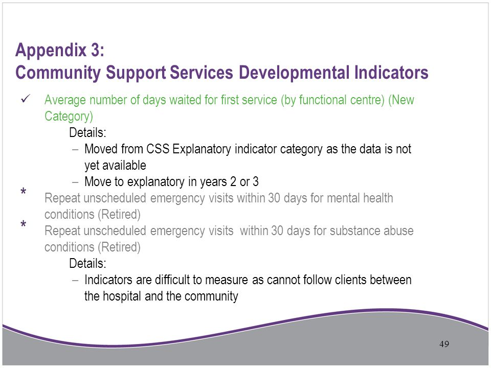Appendix 3: Community Support Services Developmental Indicators