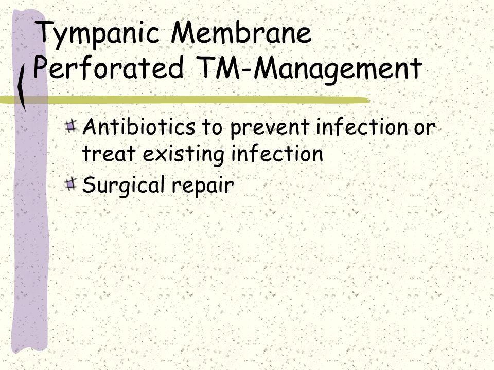 Tympanic Membrane Perforated TM-Management