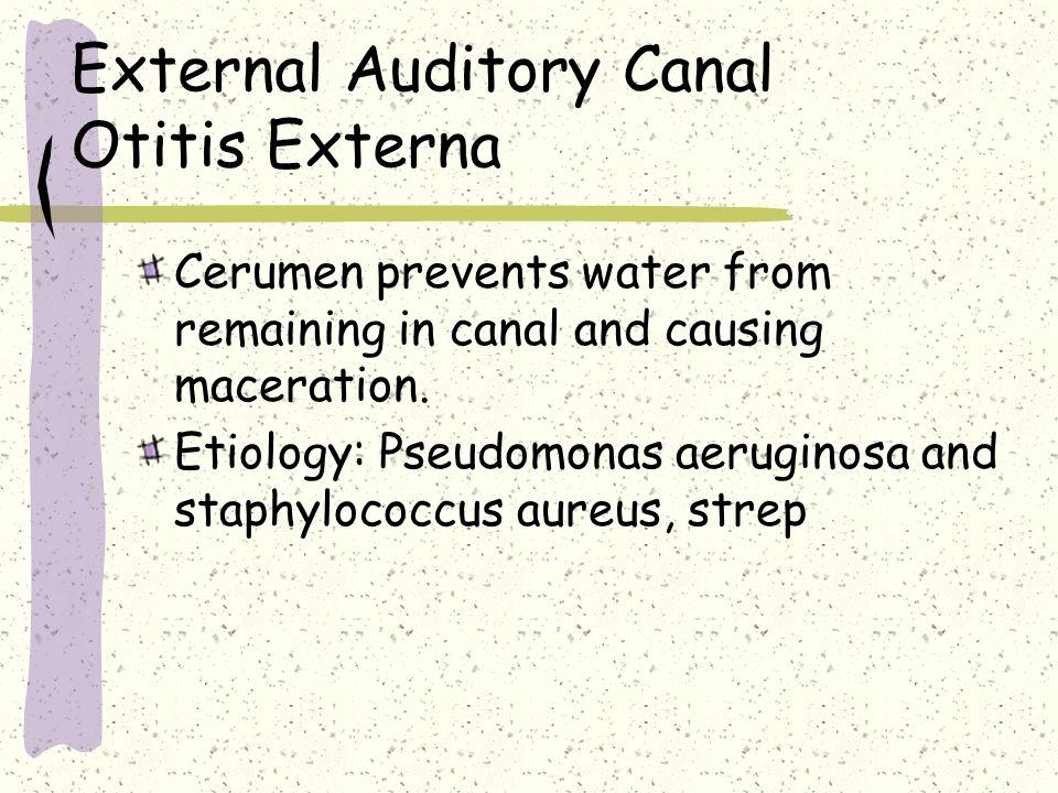 External Auditory Canal Otitis Externa