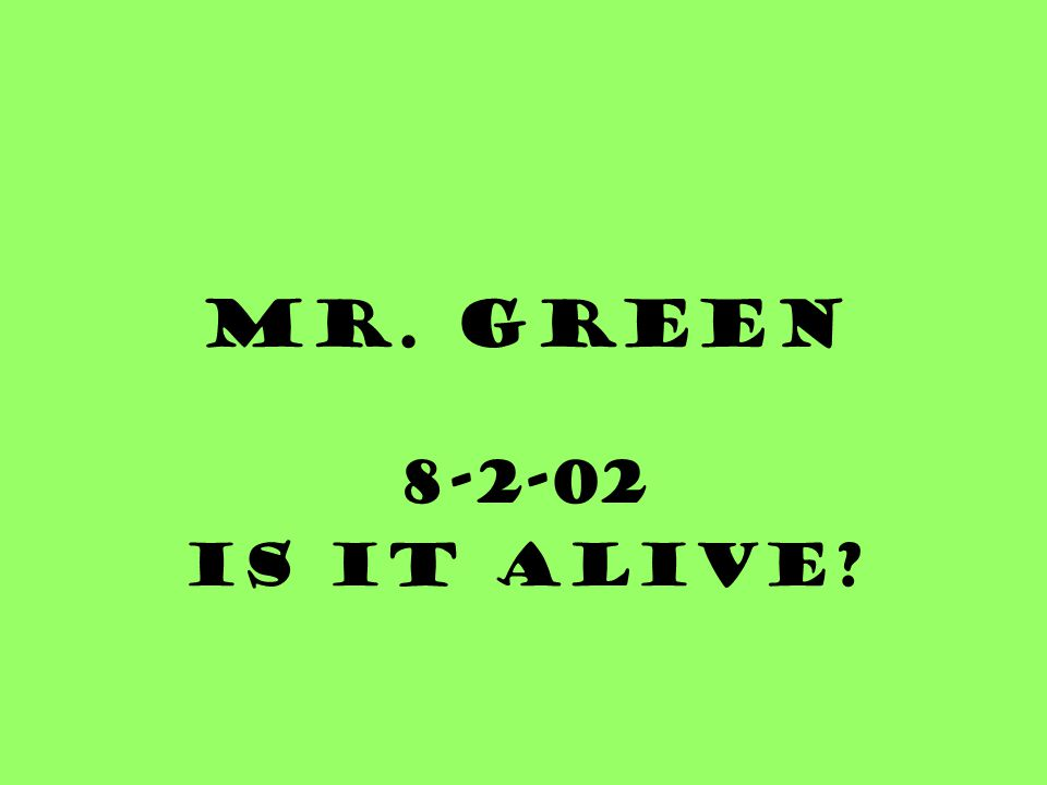Mr. Green 8-2-02 Is it alive