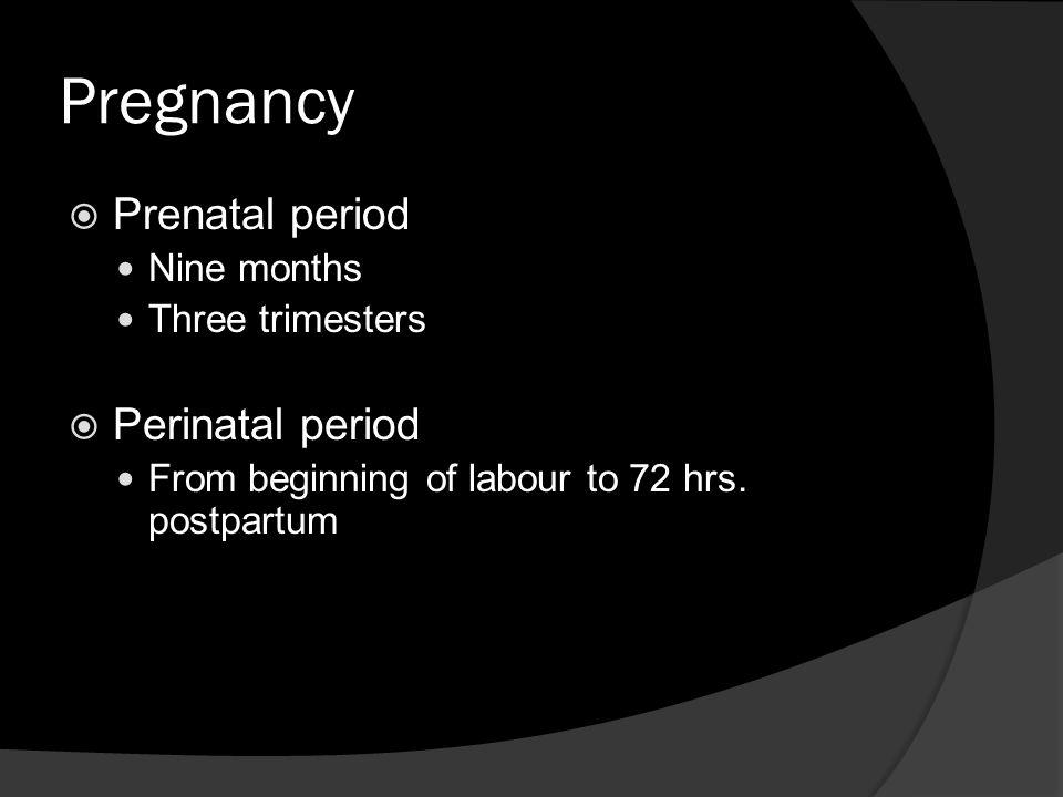 Pregnancy Prenatal period Perinatal period Nine months